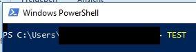Deaktivierung von Syntaxhighligthing unter Windows PowerShell